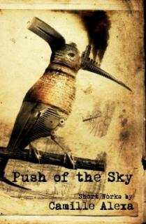 Cover photo of Push of the Sky by Camille Alexa