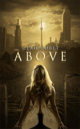 Cover photo of Above courtesy of http://www.leahbobet.com/fiction.html